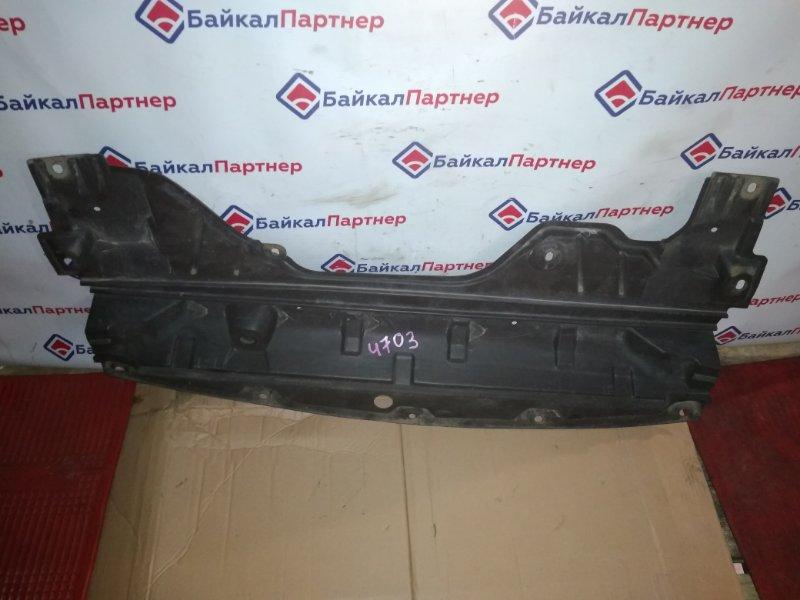 Защита двс пластик Nissan Teana J31 VQ23DE 4703
