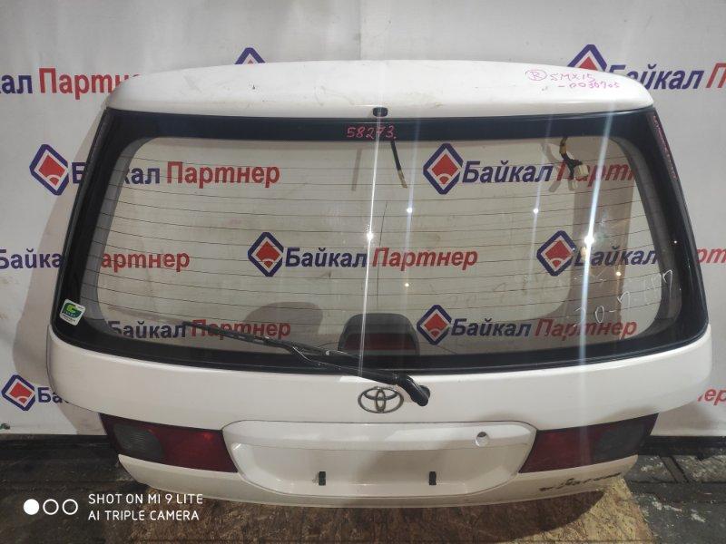 Дверь 5-я Toyota Ipsum SXM15G 3S-FE 1997 задняя