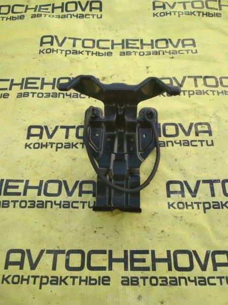 Крепление в багажнике Toyota Nadia ACN10-0005543 1AZFSE 2001 заднее