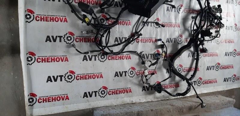 Проводка под капот Toyota Camry ACV40-3007762 2AZFE 2006