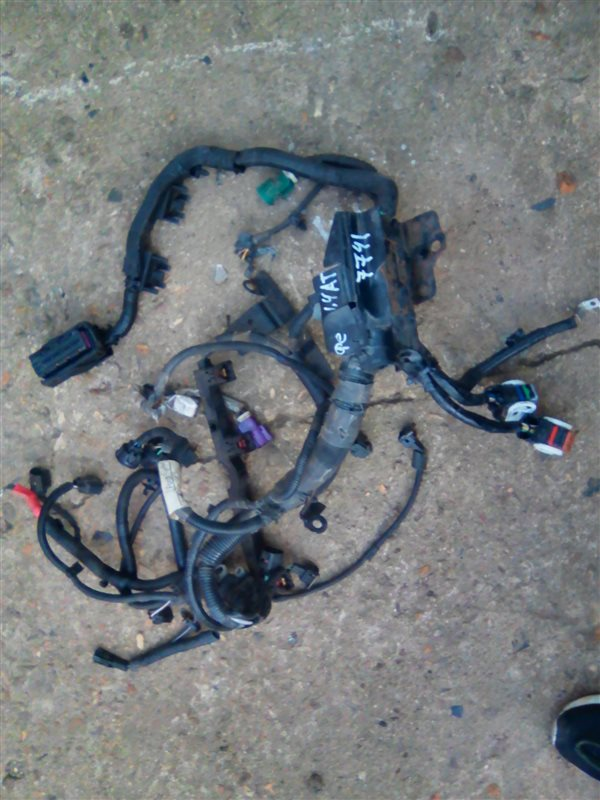 Проводка двигателя Ford Fiesta 6 CB1 ХЭТЧБЕК 1.4 SPJA 2009