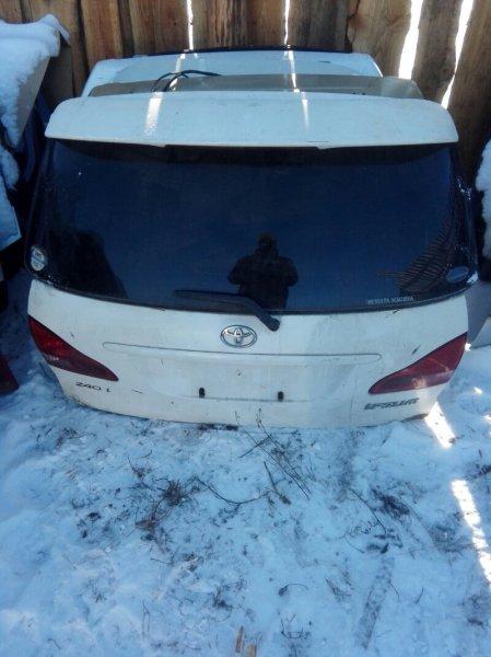 Дверь багажника Toyota Ipsum ACM21 2AZFE 2001 задняя