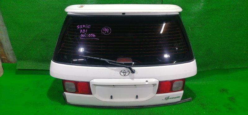 Дверь 5-я Toyota Ipsum SXM10 3S-FE 1997 (б/у)