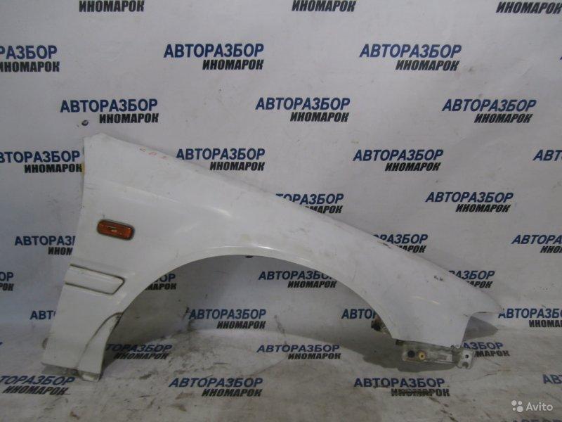 Крыло переднее правое Honda Accord CB1 переднее правое (б/у)