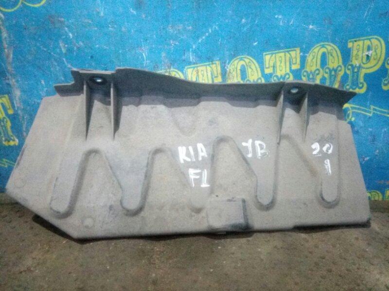 Защита двигателя Kia Rio JB G4EE 2011 передняя левая
