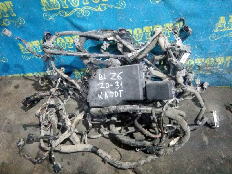 Проводка под капотная Mazda 3 BL Z6 2012