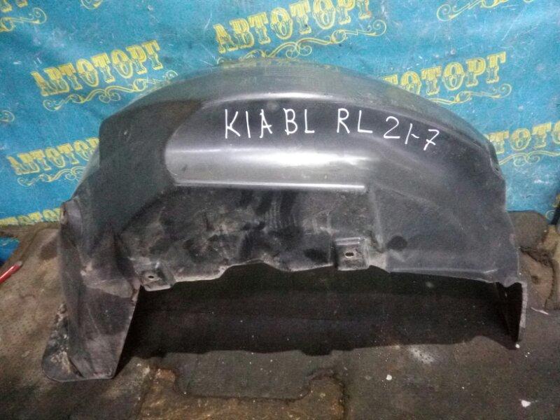 Подкрылок Kia Sorento BL D4CB 2003 задний левый