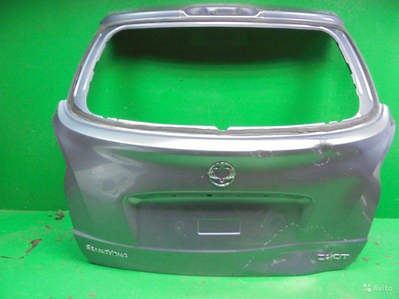 Дверь багажника Ssangyong Actyon 2 2010 (б/у)