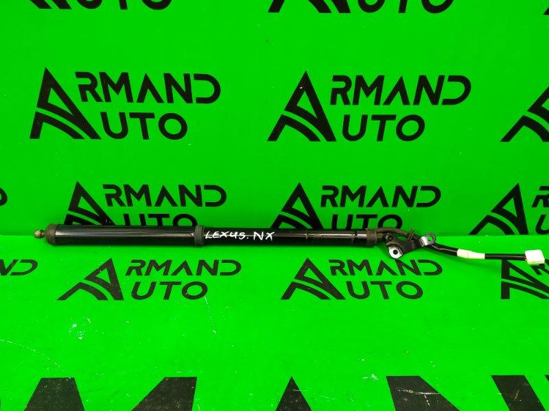 Амортизатор двери багажника Lexus Nx 200 2014 правый (б/у)