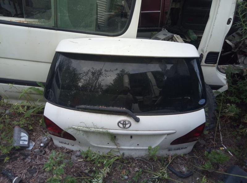 Дверь Toyota Ipsum ACM21 задняя (б/у)