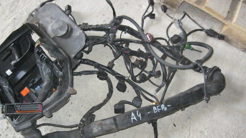 Проводка двс Audi A4 8EC BFB (б/у)