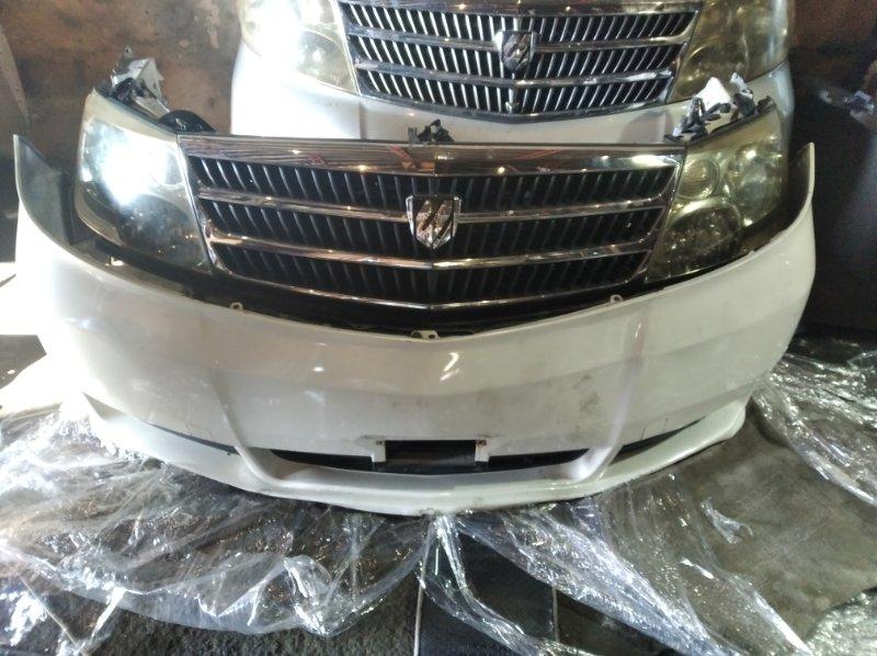 Nose cut Toyota Alphard ANH10 (б/у)