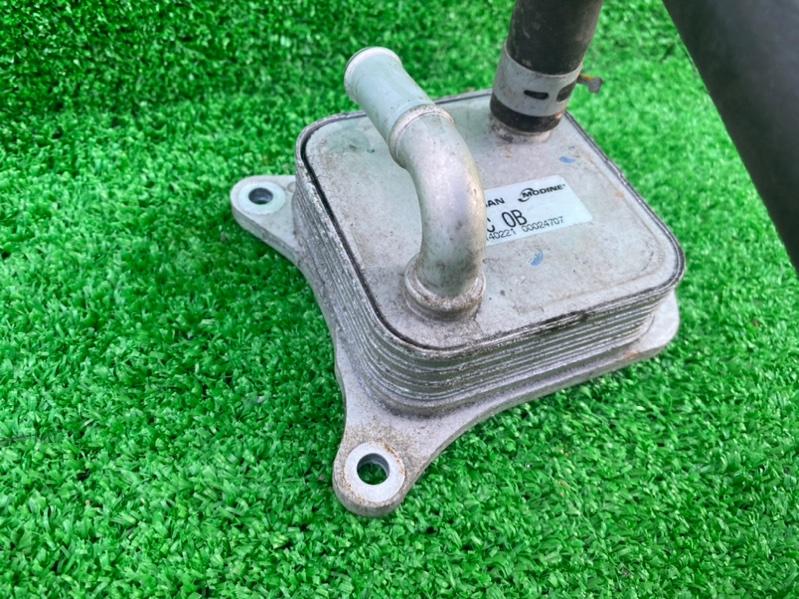 Охладитель масляный Nissan Sylphy TB17 MRA8DE 12.2012 (б/у)