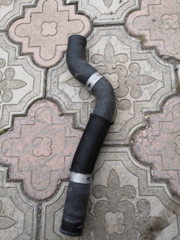 Шланг радиатора Lexus Rx400H XU30 3MZ-FE 2003 (б/у)