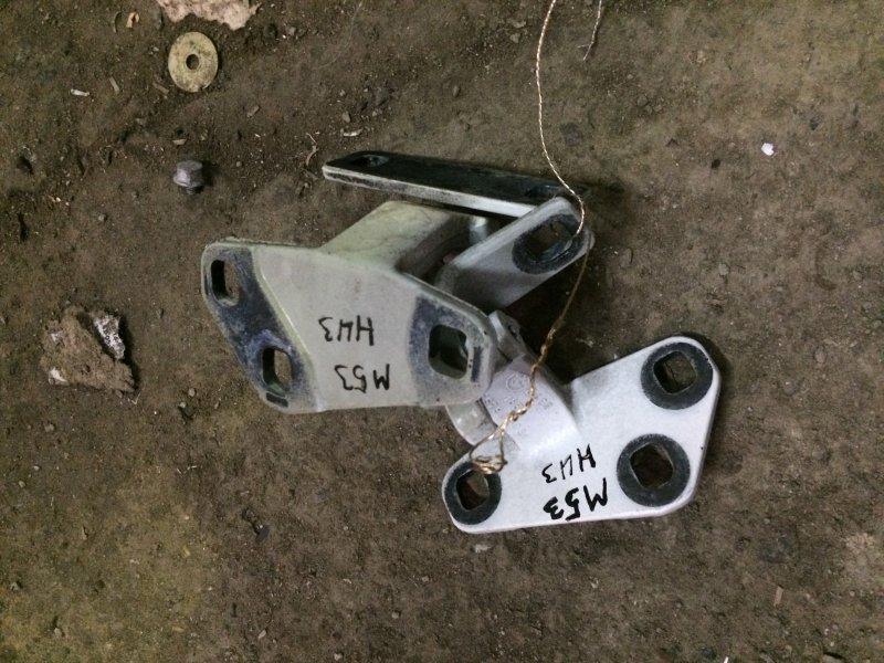 Петля крышки багажника Bmw X5 E53 M54 2004 нижняя (б/у)