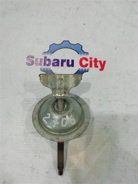 Крепление запасного колеса Subaru Forester SF5 EJ20 1997 (б/у)