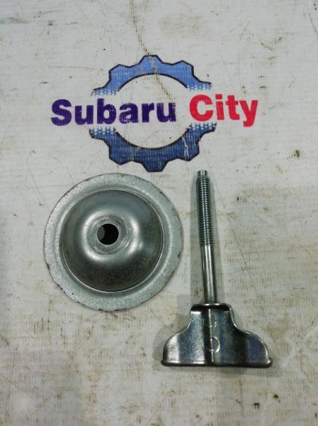 Крепление запасного колеса Subaru Legacy BL EJ20 2003 (б/у)