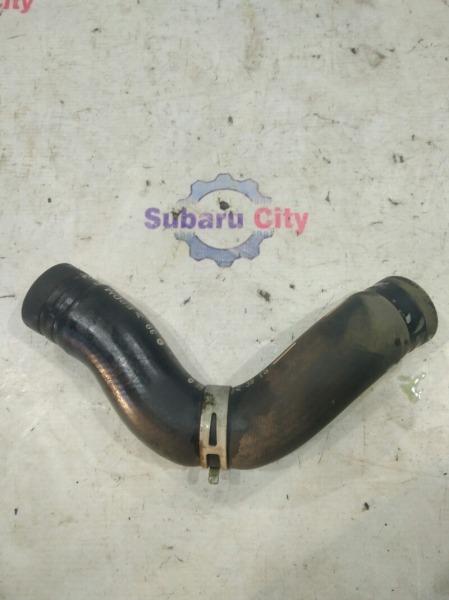 Патрубок радиатора Subaru Legacy BL EZ30 2003 нижний (б/у)