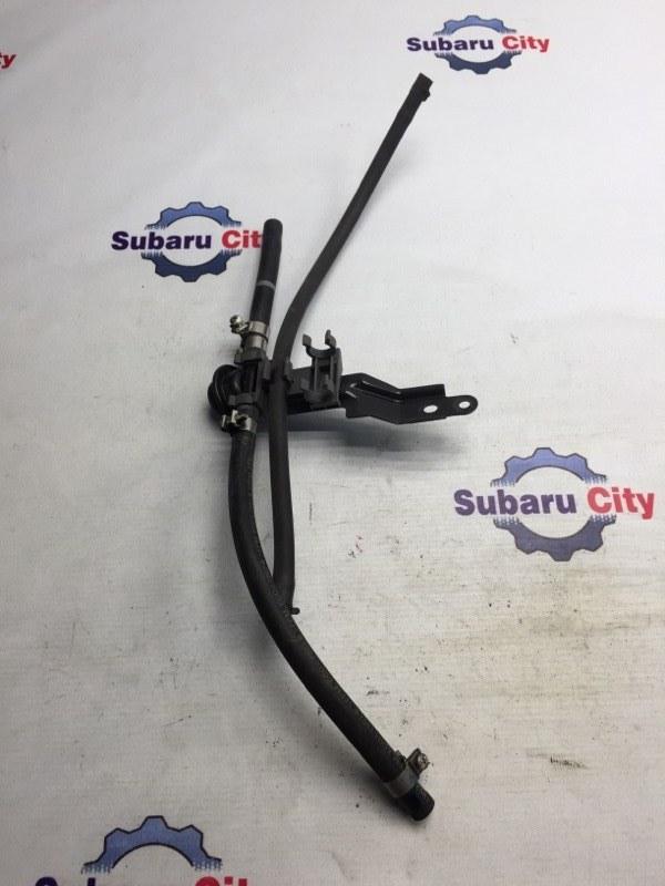 Топливные шланги Subaru Legacy BL EJ25 2007 (б/у)