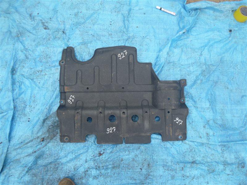 Защита двс Nissan Safari VRGY61 TB48DE 2004 (б/у)