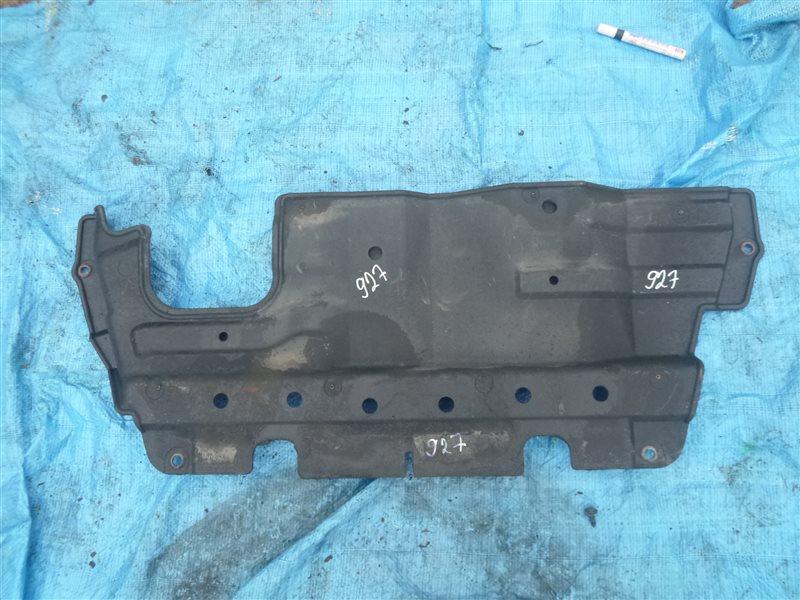 Защита двс Nissan Safari WFGY61 TB48DE 2004 (б/у)