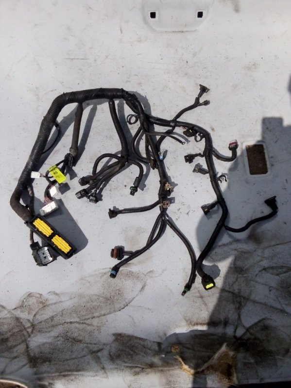 Проводка двигателя Chevrolet Lacetti СЕДАН F14D3 2012 (б/у)