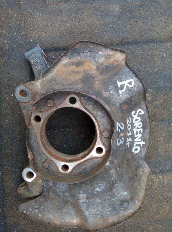 Кулак поворотный (цапфа) Kia Sorento G4KE 2012 передний правый (б/у)