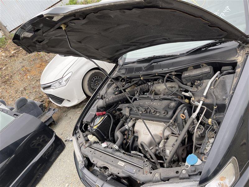 Упор капота Honda Accord CF6 F23A 1998 (б/у)