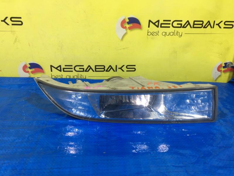 Туманка Nissan Teana J31 правая 114-63850 (б/у)