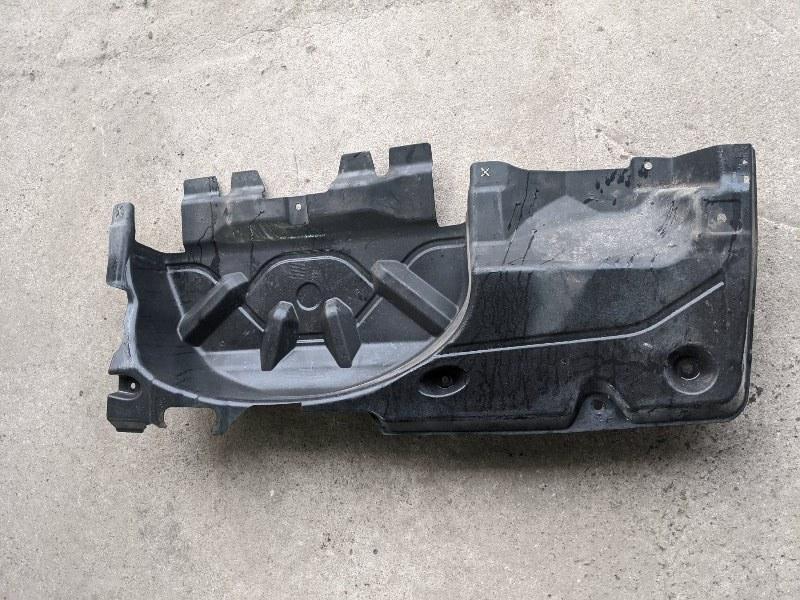 Защита антигравийная запасного колеса Volkswagen Caravelle T5 2009 (б/у)