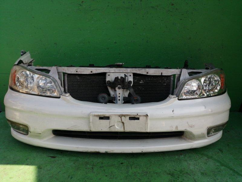 Ноускат Nissan Cefiro A33 1999 (б/у)
