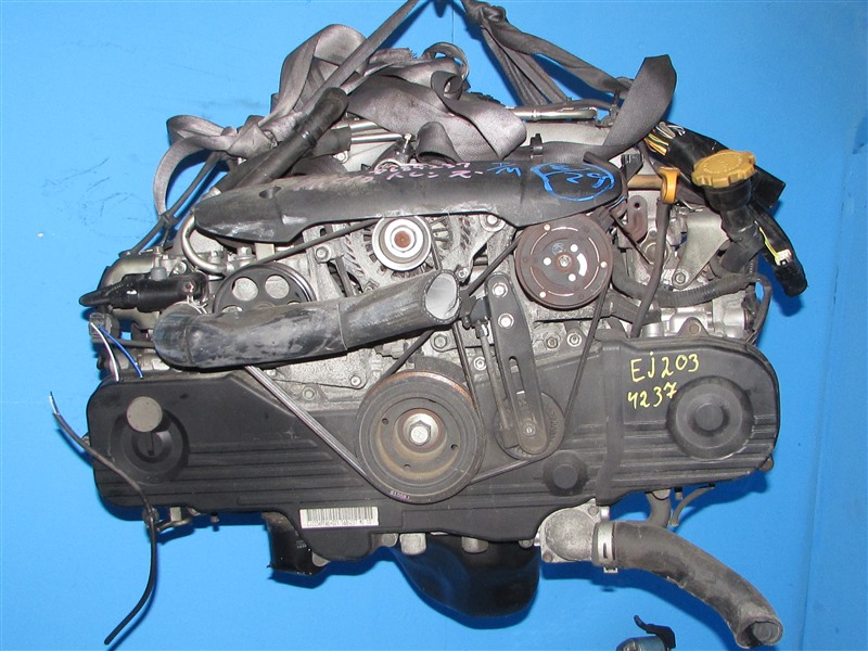 Двигатель Subaru Legacy BP5 EJ203 2009 (б/у)