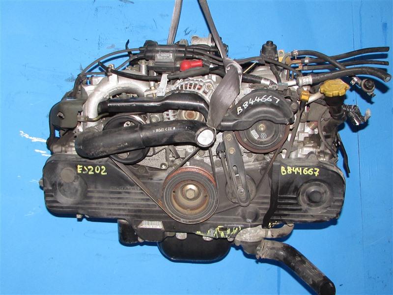Двигатель Subaru Forester SG5 EJ202 (б/у)