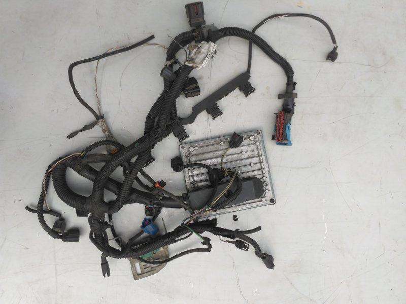 Проводка моторная Ford Focus 2 1.6 2009 (б/у)