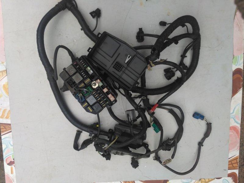 Проводка подкапотная Ford Mondeo 3 2.0 (б/у)