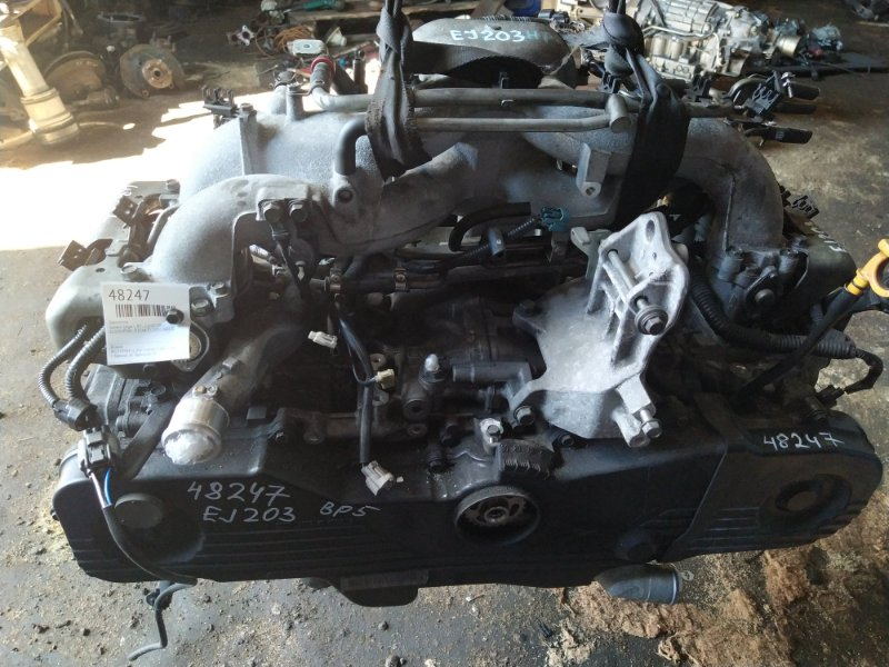 Двигатель Subaru Legacy BP5 EJ203 2007 (б/у)