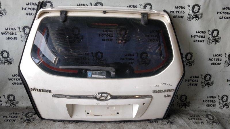 Дверь задняя Hyundai Tucson JM 2005 (б/у)
