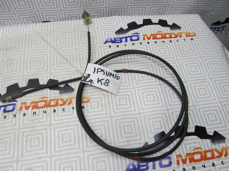 Трос капота Toyota Ipsum SXM10-0148280 3S-FE 1998