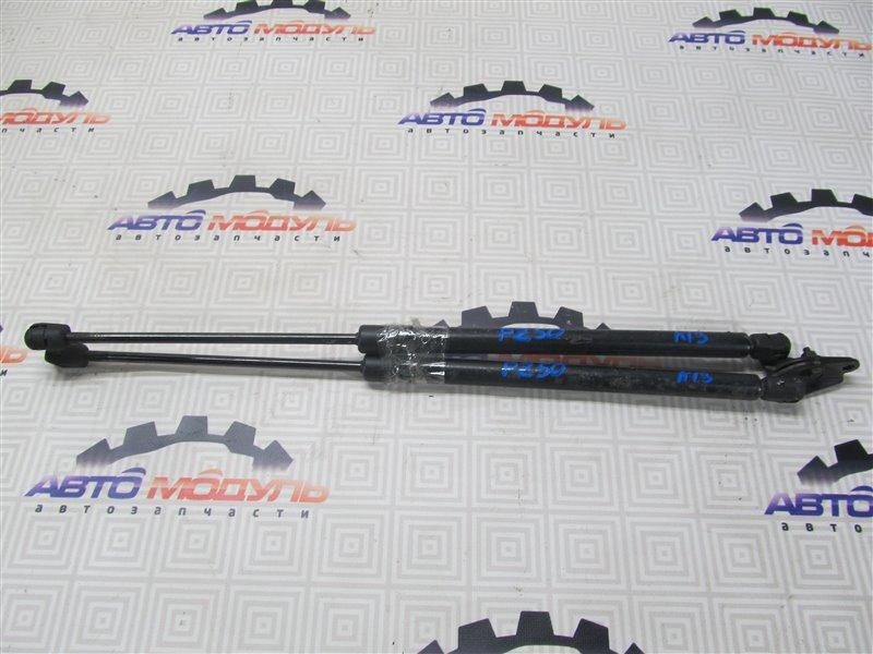 Амортизатор двери багажника Nissan Murano PZ50-004296 VQ35-DE 2005
