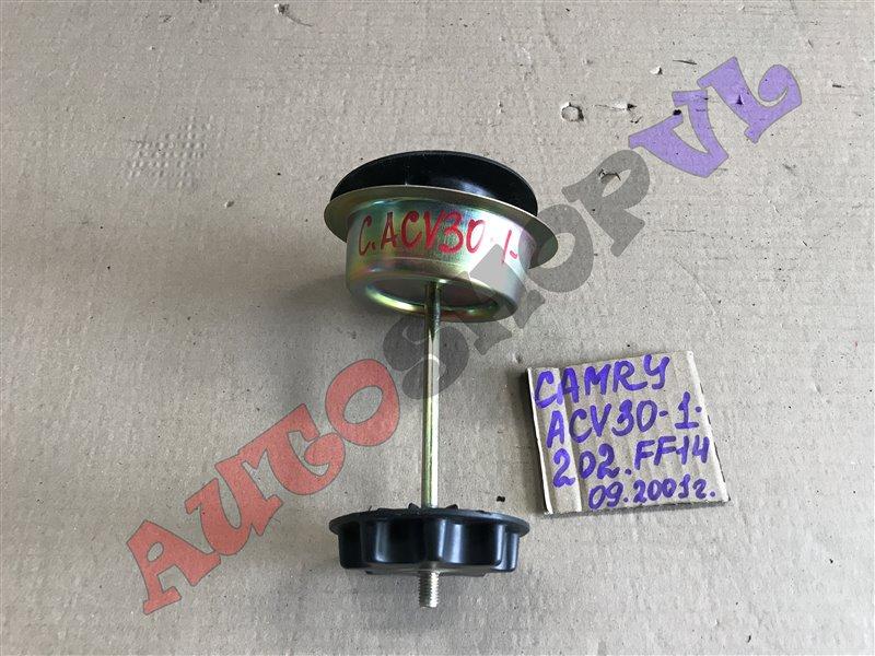 Крепление запасного колеса Toyota Camry ACV30 2AZFE 09.2001 (б/у)