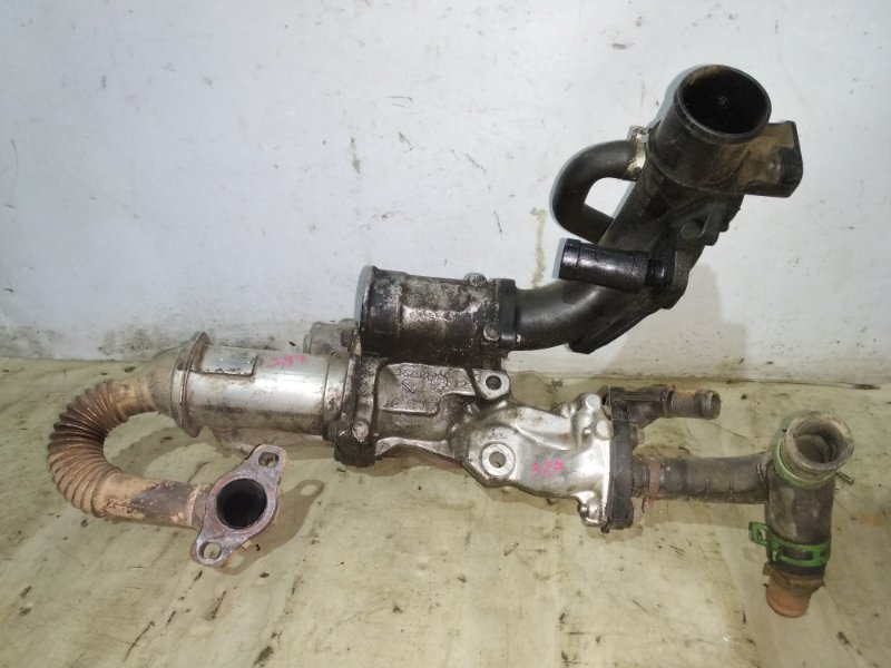 Радиатор системы егр (отработанных газов) Renault Megane 3 K9K 2009 (б/у)