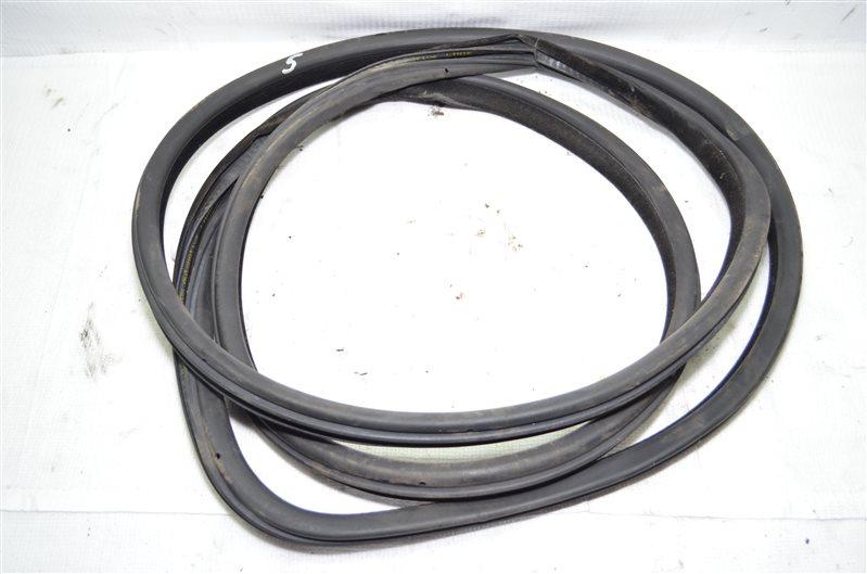 Уплотнитель двери Bmw X5 E53 3.0 M54B30 2003 передний (б/у)