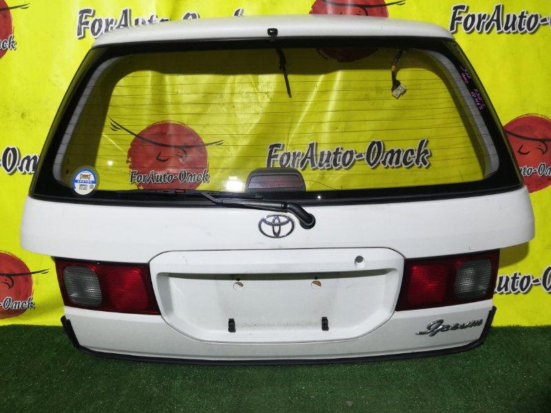 Дверь 5-я Toyota Ipsum SXM10 3S-FE (б/у)