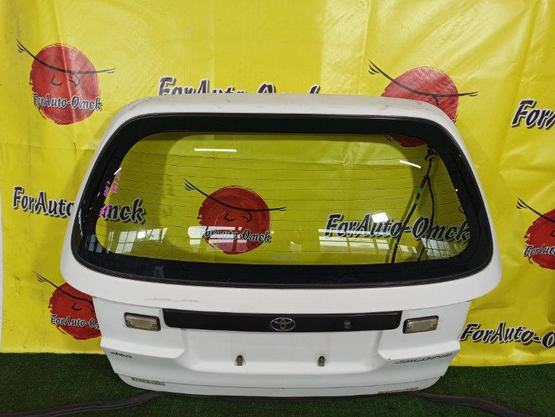 Дверь 5-я Toyota Caldina Van ST198V 3S-FE 2001 (б/у)
