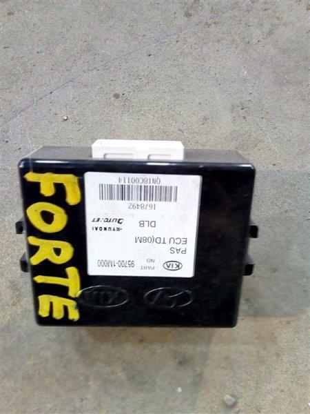 Блок управления парктроником Kia Forte TD G4FC 2009 (б/у)