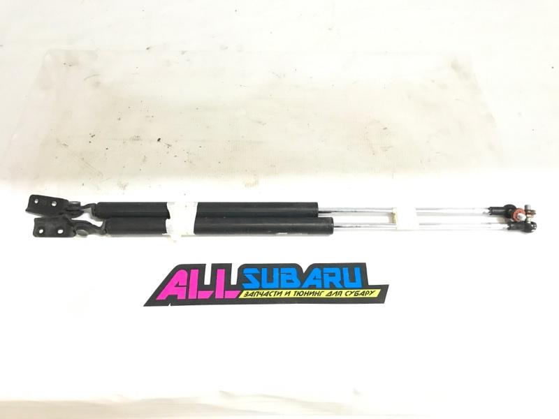 Амортизатор, упоры крышки багажника Subaru Forester SG 2002 (б/у)