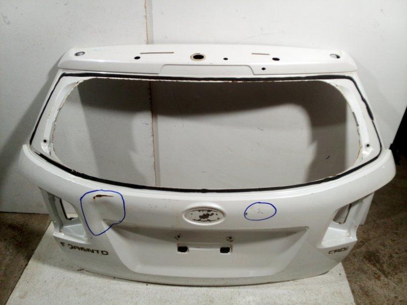 Дверь багажника Kia Sorento 2 XM 2009 737002P010 (б/у)
