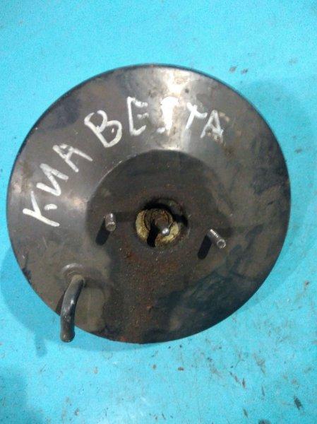 Вакуумный усилитель Kia Besta R2