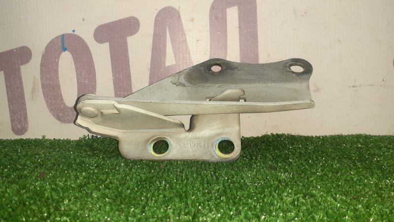 Петля капота Nissan Elgrand AVWE50 QD32ETI 1997 правая (б/у)