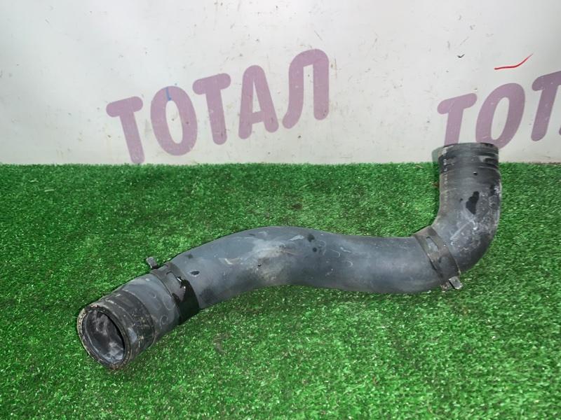 Патрубок радиатора Nissan Bluebird Sylphy KG11 MR20DE нижний (б/у)